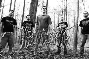 Necrocosm Band