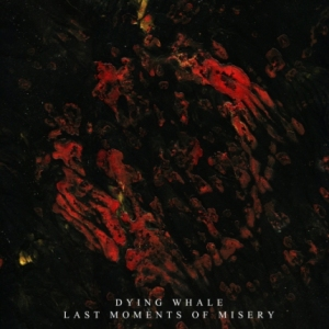 Dying Whale