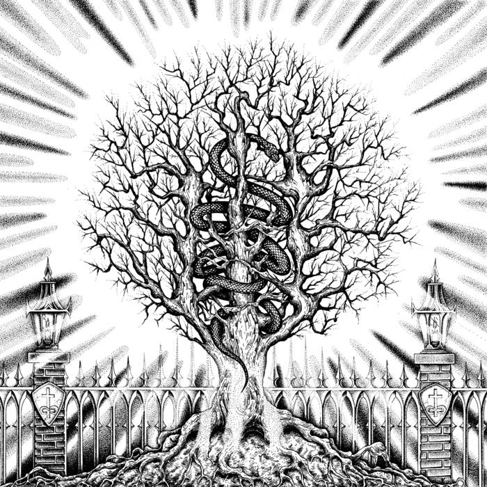 In the Company of Serpents – Ain-Soph Aur(Review)