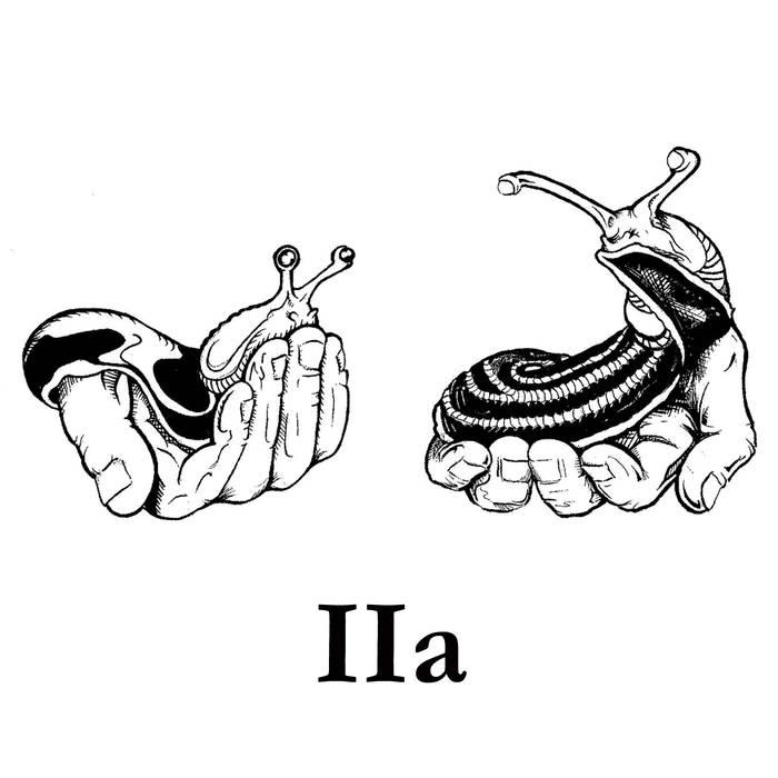 Slug Comparison – IIa(Review)