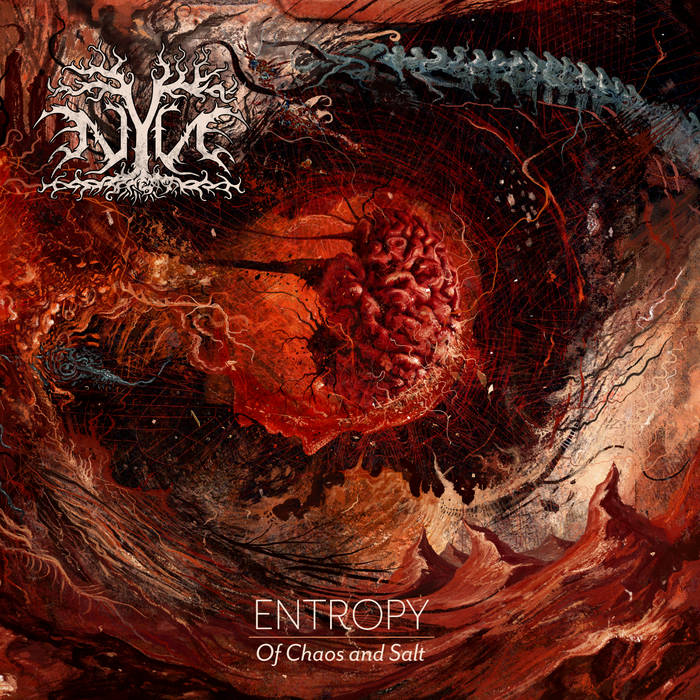 Nyn – Entropy: (of Chaos and Salt)(Review)