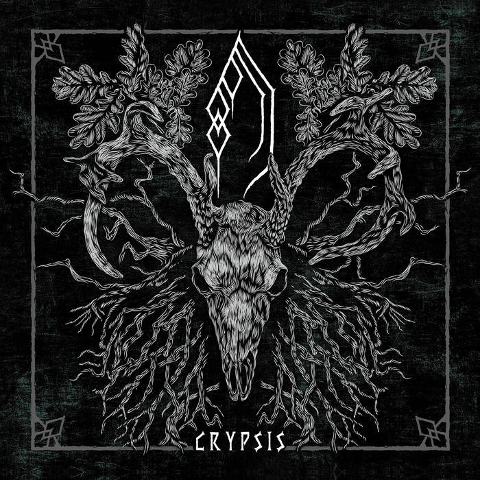 Forest of Grey – Crypsis(Review)