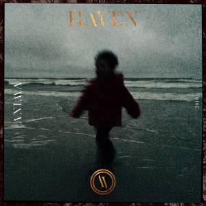 Haven - Anima