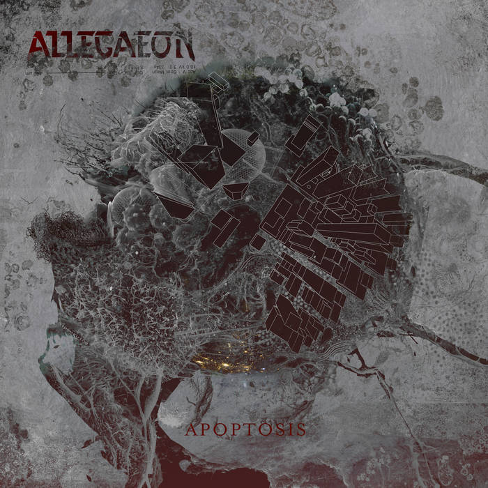 Allegaeon – Apoptosis (Review)