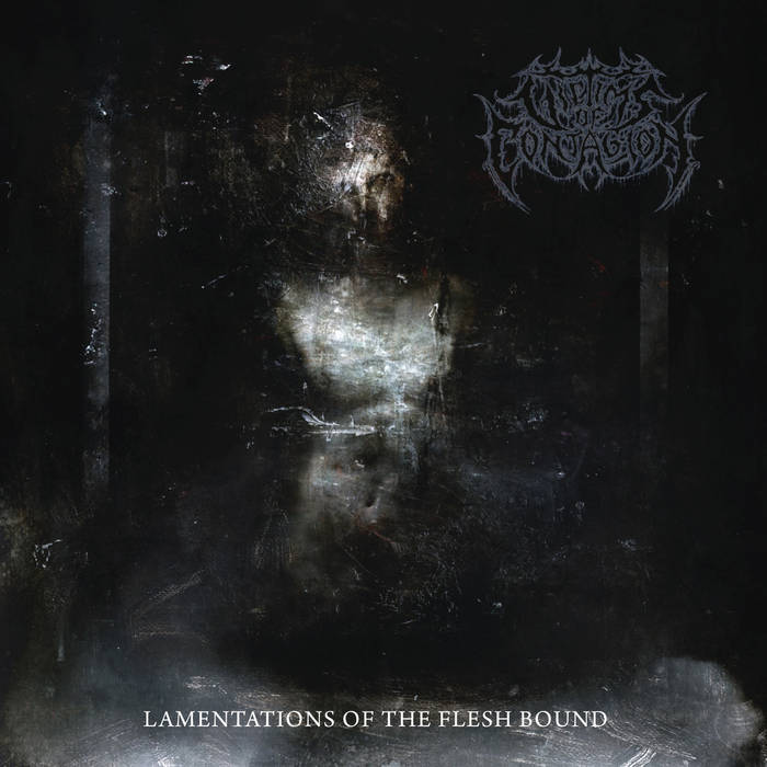 Victims of Contagion – Lamentations of the Flesh Bound(Review)