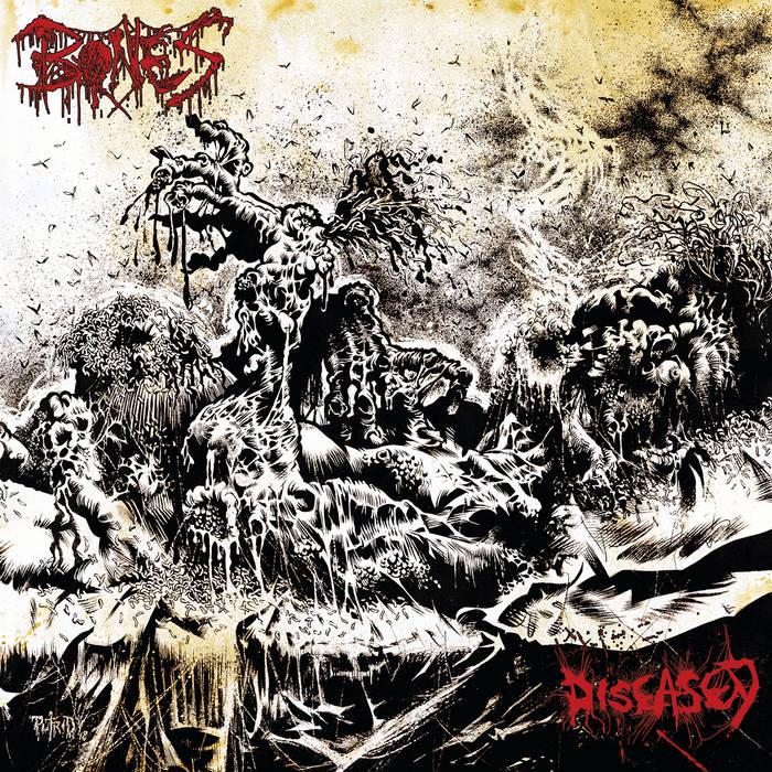 Bones – Diseased(Review)