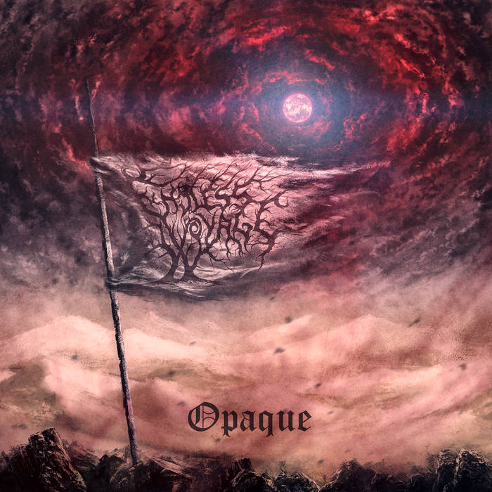 Endless Voyage X – Opaque(Review)