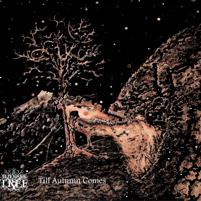 Ilienses Tree – Till Autumn Comes (Review)