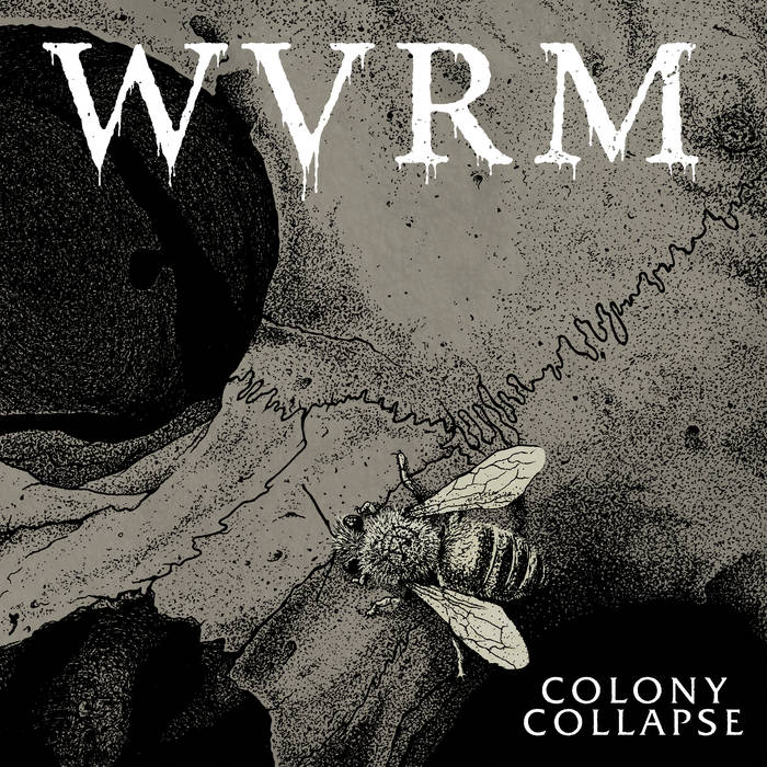 WVRM – Colony Collapse (Review)