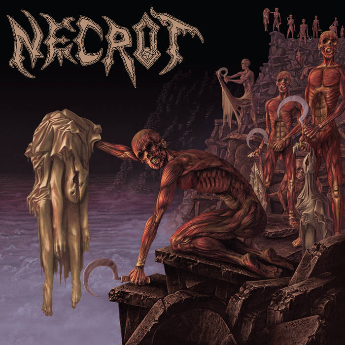 Necrot – Mortal (Review)