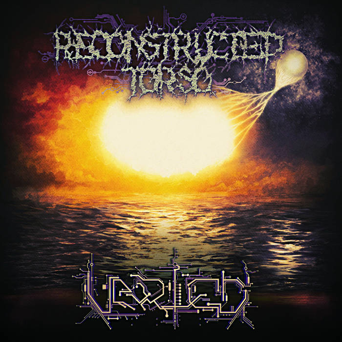 Reconstructed Torso – Varied (Review)
