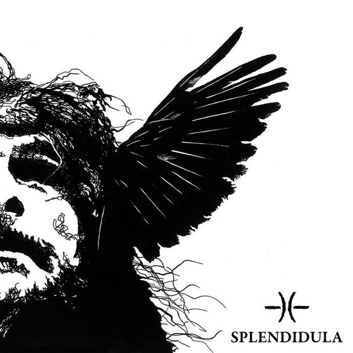Splendidula – Somnus(Review)